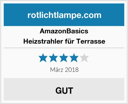 AmazonBasics Heizstrahler für Terrasse Test