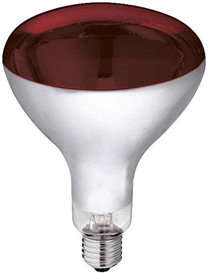 Kerbl Infrarotlampe Hartglas
